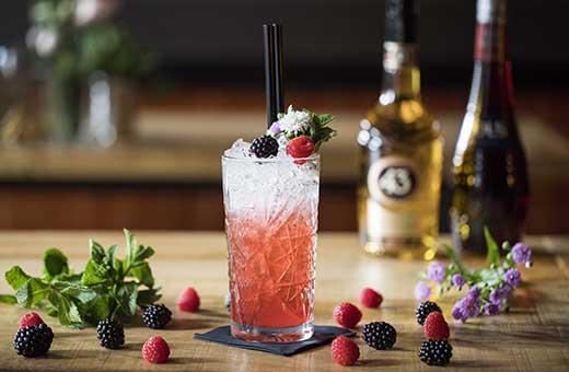 cocktails drinken leeuwarden - Terras leeuwarden